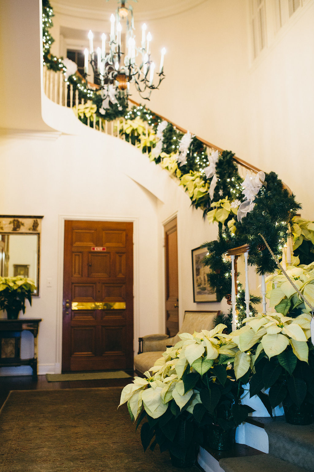 Poinsettias on the Staircase